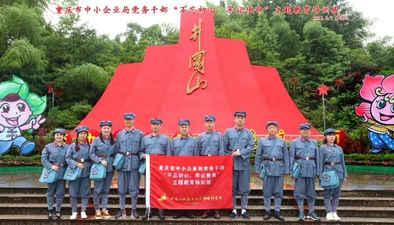 重庆市中小企业局